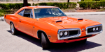 Superbee-3-of-26